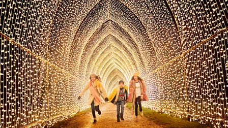 Children underneath a fairy light canopy