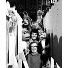 The camera crew with the Muppets: Jeremy Hoare, Steve Harrow, Paul Nartingell, Jim O'Donnell and Mike Dugdale