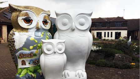 The Wild in Art trail for 2022 will be owl sculptures