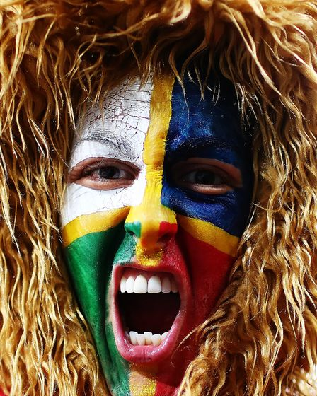 AUCKLAND, NEW ZEALAND - JULY 08: A Lions fan shows her support during the Test match between the Ne