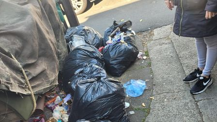 Seven Kings resident torn apart by animals after wheelie bin delay