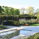 Calming reflection pool in garden designed by Envisage Gardens