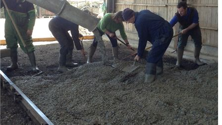The team at Wood Farm, in Hail Weston, laying the new concrete floor in the barn.