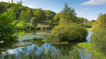 Otterhead Lakes are a pair of reservoirs in the Blackdown Hills Area of Outstanding Natural Beauty south of Otterford