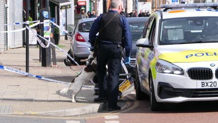 A sniffer dog at the scene of a shooting in Dudden Hill