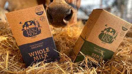 Samples of How Now Dairy milk products from Devon.