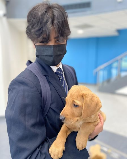 A Hitchin Boys' School student with an eight week old puppy, which were brought in for Mental Health Awareness Week 2021