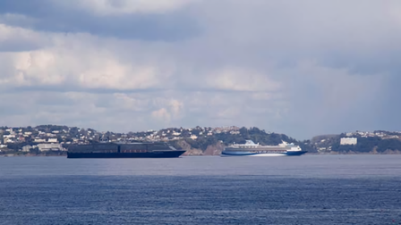 Two large cruise ships sit in the water with the Devon coast as a background