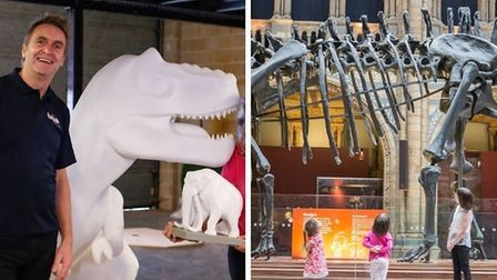 The GoGo Discover trail and Dippy's visit to Norwich Cathedral will bring a summer of dinosaurs to Norwich.