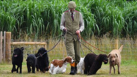 FREE TO USE IMAGESPictured: Game Fair 2019PR Handout - Free to use