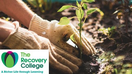 Gardening can greatly help wellbeing