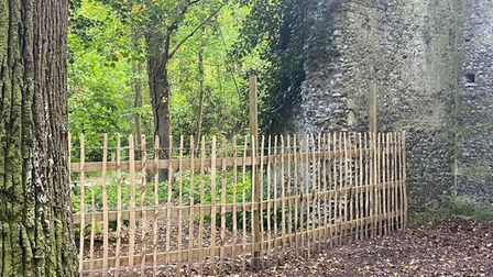 St Mary's Church East Somerton fencing