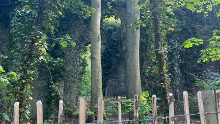 East Somerton witches' church ruin fence