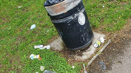 North Somerset Council disputes litter claims
