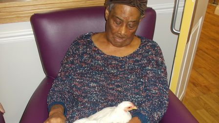 Willows care home resident interacts with one of the HenPower hens.
