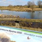 A view of the Ingrebourne marshes at Hornchurch Country Park