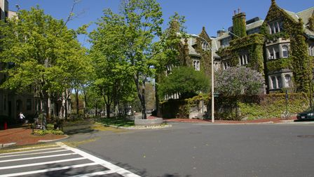 An empty street with vine-covered building on the Boston University campus located in Boston