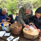 Young and old together discovering new skills at Orchard Forest School