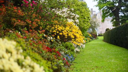 The gardens at Lexham Hall are in full bloom. Picture: Ian Burt