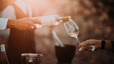 Bespoke vineyard tours and wine tasting sessions are an exciting way to spend a summers day in Hampshire