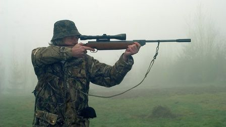 Field accuracy is a combination of the inherent accuracy of the rifle, and my inherent inaccuracy
