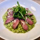 Game for Anything pigeon risotto and venison stroganoff