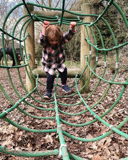 Little girl having fun at a playground at Hollow Trees Farm