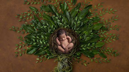 Nevina Holland will be funding the planting of 25 trees for every newborn she photographs.