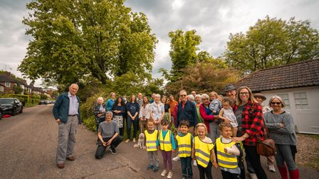 Muswell Hill neighbours trying to save their horsechestnut tree