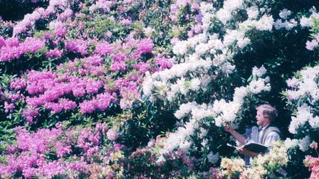 Admiring the rhododendrons at Sheringham Park in 1994.