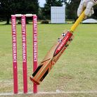 A cricket bat and some stumps.