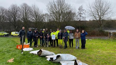 269 trees were planted at Hutton Moor on February 19