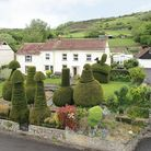 large white building with gardens in front with huge topiary yew trees and countryside beyond