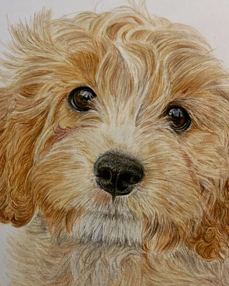Deborah Cornes turned to painting pets after a career in the finance world