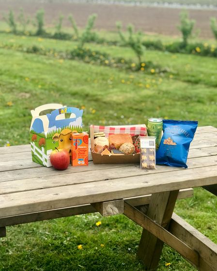 Packed lunch on picnic bench