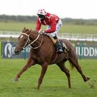 Adam Kirby riding Saffron Beach to win The Blandford Bloodstock Maiden Fillies' Stakes