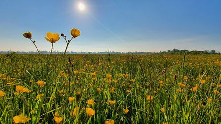 This image of Portholme Meadow was captured by Catherine Foster.