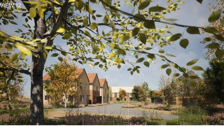 """Ethos Care Providers director Gavin Elsey has said the site will look like a """"Scandinavian village"""""""