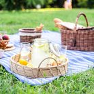 Healthy vegetarian picnic with a delicious spread of fresh fruit and bakery products on green grass.