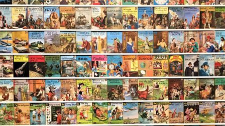The Ladybird Wall of Books