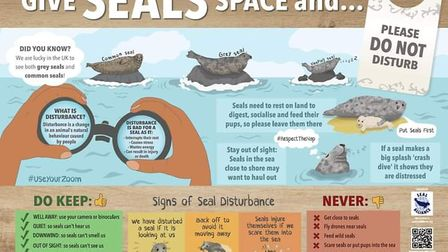 An example of The Norfolk Seal projects information leaflets which have been created by the Seal Alliance