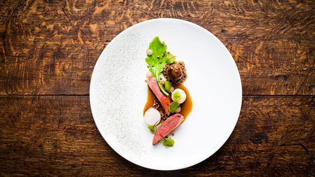 A dish of squab pigeon, turnip, fermented green strawberry and buckwheat
