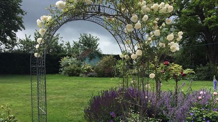 Bank Cottage, Little Chesterford is open for the National Garden Scheme