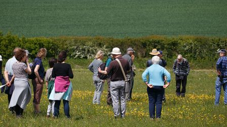Butterfly Walk at Heartwood Forest