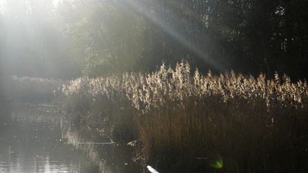 The fishing lake at Chantry Park has been closed to allow the fish to spawn