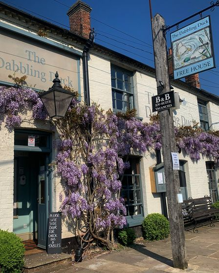 The Dabbling Duck at Great Massingham