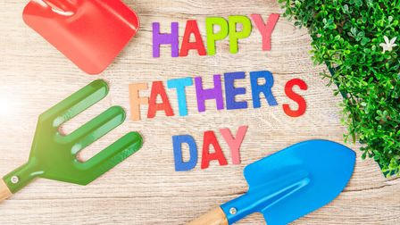 If your dad loves gardening, you'll be spoilt for choice this Father's Day.