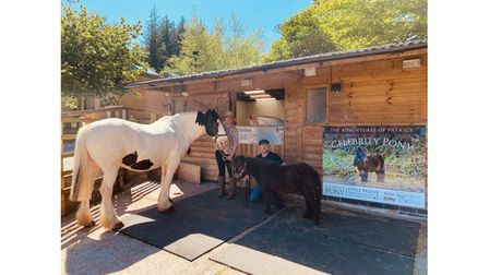 Couple with pony and horse at stables