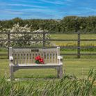 A bench in a cemetery with red flowers tied to it