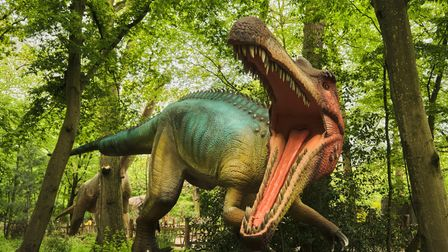 One of the dinosaurs at World of Dinosaurs at Paradise Wildlife Park in Hertfordshire.